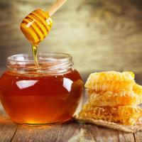 蜂蜜が甘いように Proverbs 24:13-14