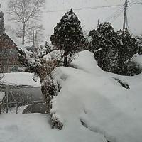 マイナス3℃で本格的な雪です