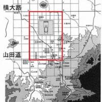 """""""まばゆい""""赤の雑草‥(^^)v"""