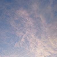 今朝の空、いろいろ