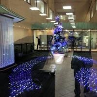 病院のイルミネーション/夜のウオーキング/今年の一皿