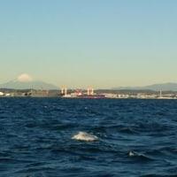 昨夜は 東京湾アジ釣り 今朝出港