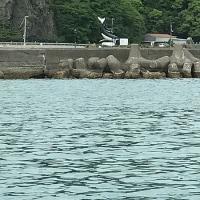 竹村貸し船店で船を借りて・・。