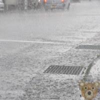 にわか豪雨