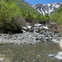 残雪と新緑の一ノ倉沢  5月19日