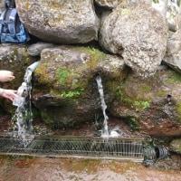 羊蹄のふきだし湧水