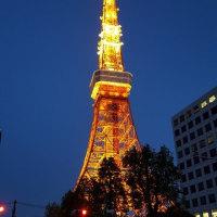 春宵のタワー界隈