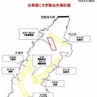 琵琶湖の藻刈り計画 6.21版