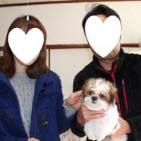ココ君が新しいお家の子になりました&可愛いお写真ありがとう♪