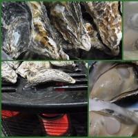 から付き牡蠣