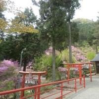 今熊神社(八王子市)