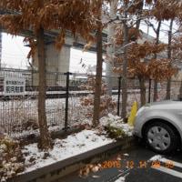平地でも初雪になりました。