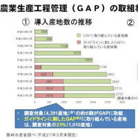 農業生産工程管理(GAP)