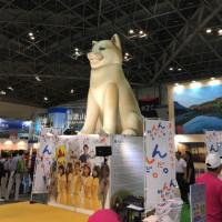 巨大な秋田犬