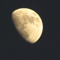 夕立と?月