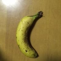 二日酔いの朝にバナナ1本