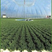 「植物工場」ビジネスに進出/建設会社