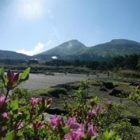 5月18日(木)のえびの高原