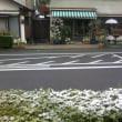 なごり雪(3/31)
