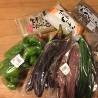 野菜が来た♪