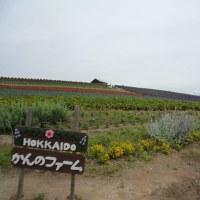 2010年北海道 11日目 7月14日 2/2 富良野夕張周遊