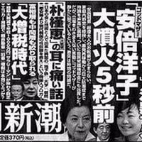 【森友疑惑】本日の小ネタ「洋子お母様が森友問題で怒っている」