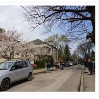 バルト3国10 リトアニア・杉原千畝旧日本領事館