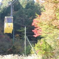 織姫園芸クラブの旅行です
