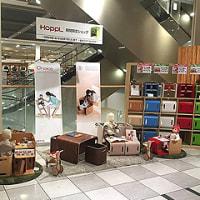 堺北花田阪急3F展示販売しています!