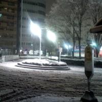 3年ぶりに大雪