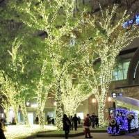 「天神のクリスマスへ行こう2016」(警固公園のイルミネーション)