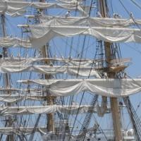 たまの港フェスティバル2017