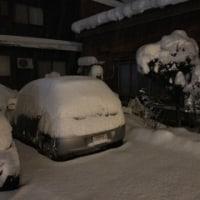 雪国のアイス屋さんの冬の対策。