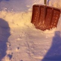 降雪20cmくらい?