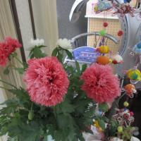 何の花、名は、