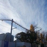 12月8日(木) 晴れ