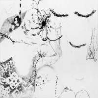 前 田 愛 美 展 -おりがみの匂い- <創作版画~銅版画の魅力シリーズ> 4月12日(水)〜4月19日(水)