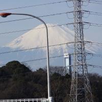 大きな富士山です