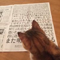 今日の新聞に