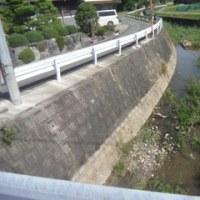 桜内館 近江国(日野)