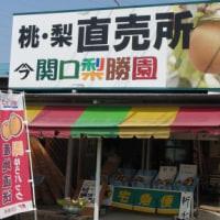 お知らせ(前橋大好きJazzとBluesの伝道師カッチャン企画2016はお休み)