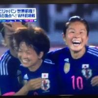 2015年W杯前の嬉しかった試合