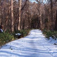 野幌森林公園の恩恵