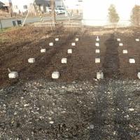 物置の基礎、シラカバ薪割り、ヤナギ伐採