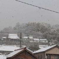 温暖な町にも雪化粧