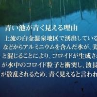 北海道の旅 Ⅷ 「美瑛の青い池」