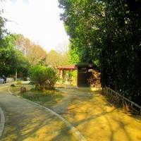 1月10日、11日 陶器山を歩く