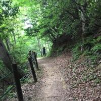 古洞の森トレラン