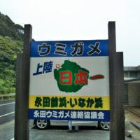 無料マイルで行く屋久島への旅 3日目 ☂