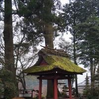 青梅市成木 安楽寺